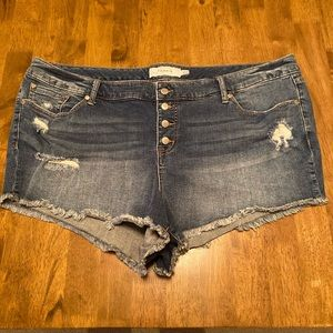 Torrid distressed shorts size 22